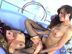 Asian Shemales Eva Lin And Venus Lux Fuck Each Other