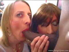 Hungry crossdressers double team big black cock for facial cumshot