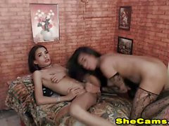 Shemale Duo Extreme Fucking On Cam